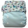 Pempem! Cloth Diaper