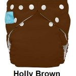 cb hollybrown