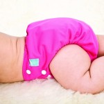 Cloth Diaper: Charlie Banana Pocket Diaper