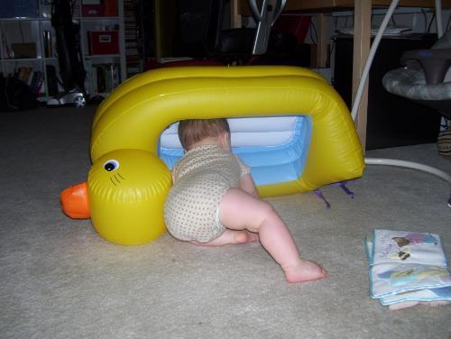 munchkin duck tub use (3)