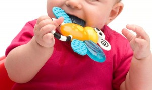 sassy flutterby teether in use
