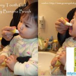 Baby Banana Brush Plus Xlear Spry Tooth Gel