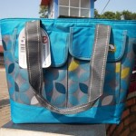 Igloo Cooler Dual Compartment 24