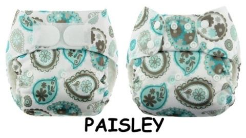 bb paisley