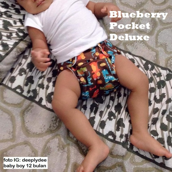 blueberry pocket deluxe in use
