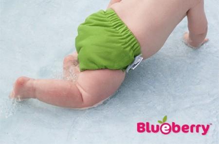 blueberry freestyle swim diaper
