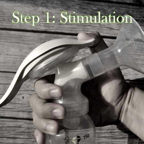 Medela Harmony Stimulation