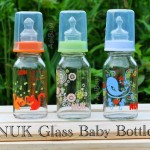 NUK Botol Susu Kaca (Glass Baby Bottle)