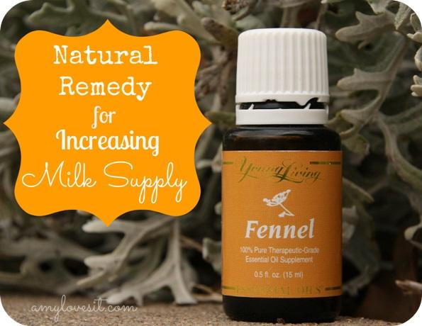 Young Living Fennel Essential Oil Untuk Memperlancar