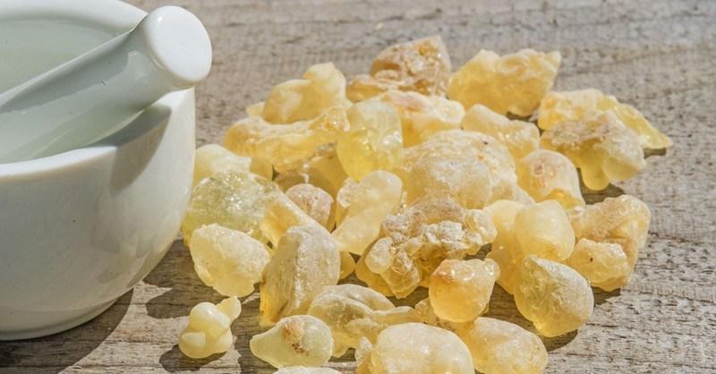 Manfaat Minyak Kemenyan Frankincense Oil atau Luban