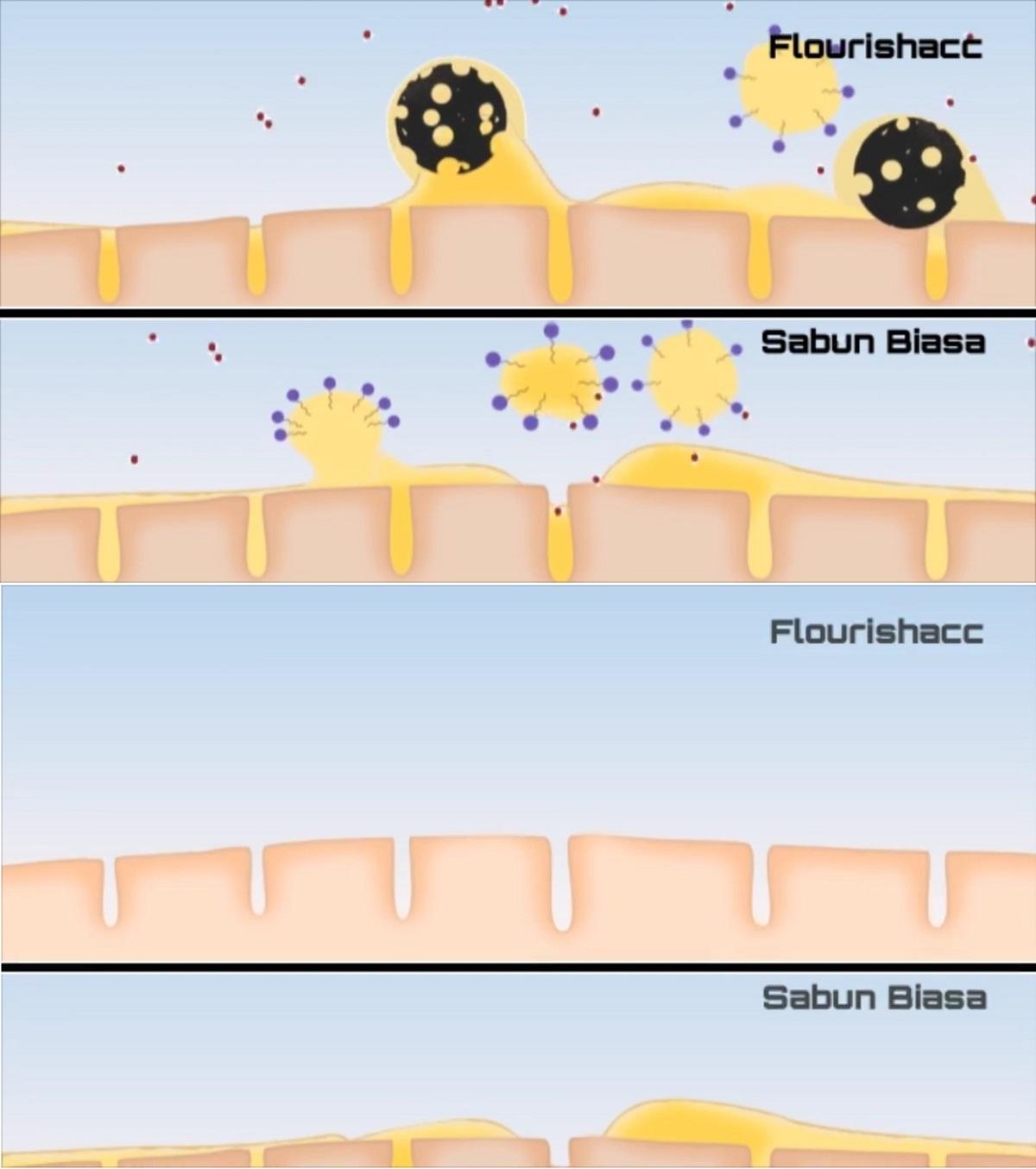 Flourishacc Sabun Karbon Aktif (Cara Kerja)