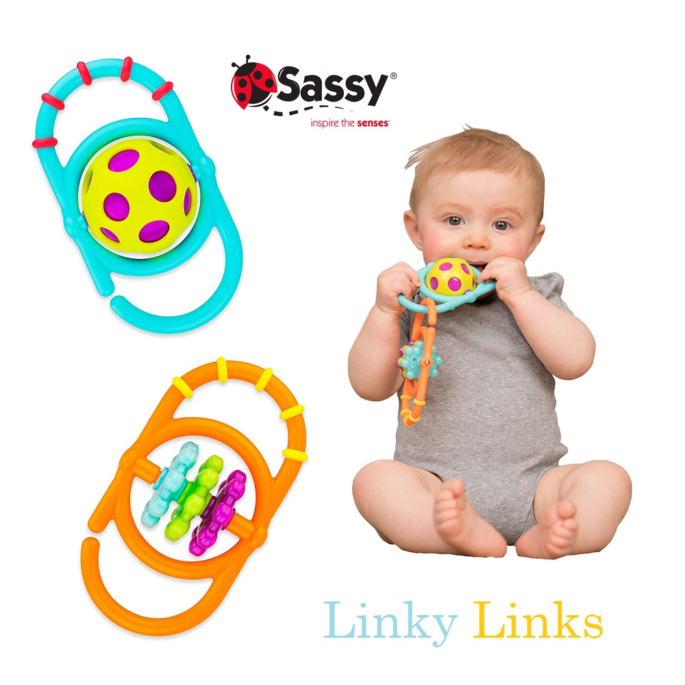 Sassy Linky Links (1)